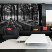 premiumarte fototapete wald preisvergleich. Black Bedroom Furniture Sets. Home Design Ideas