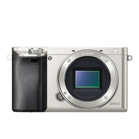 Sony Alpha 6000 Body silber